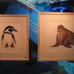 Penguin & Walrus