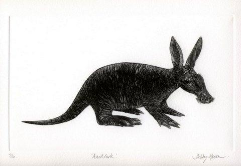 Aardvark Mezzotint