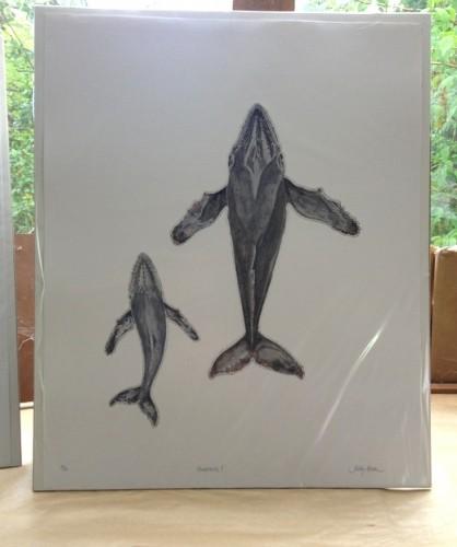 Humpbacks printed & hand coloured