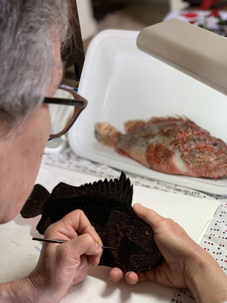 Drawing the Scorpion Fish Plate